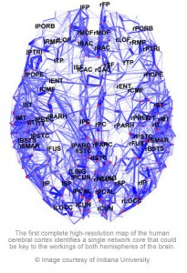 map of brain 205x300 A brain full of maps